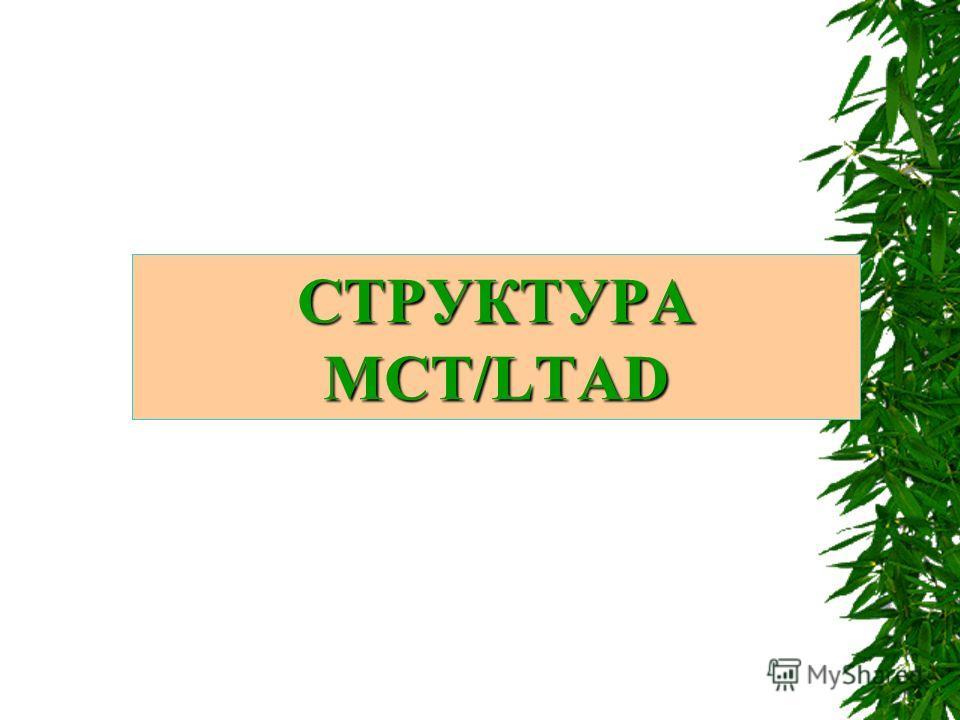 СТРУКТУРА МСТ/LTAD