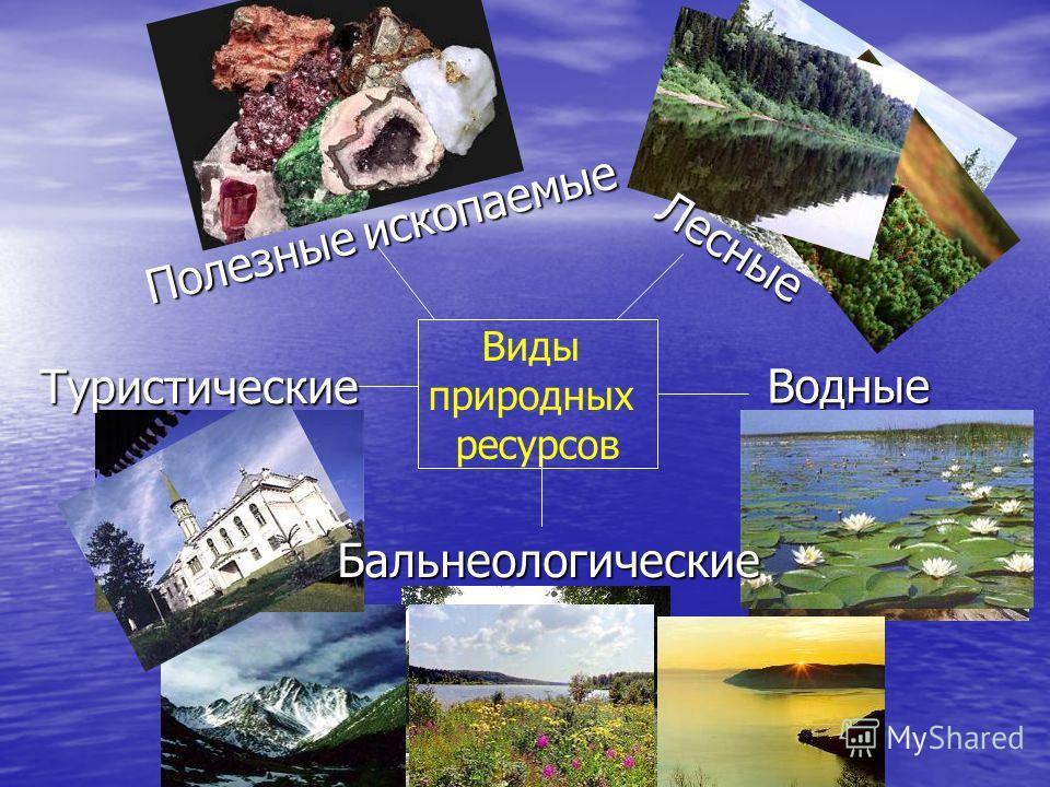Виды природных ресурсов Полезные ископаемые Водные Лесные Бальнеологические Туристические