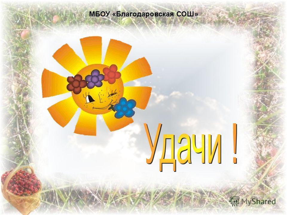 МБОУ «Благодаровская СОШ»