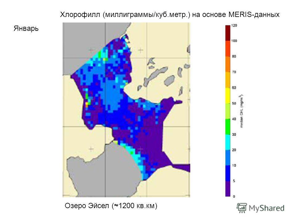 Хлорофилл (миллиграммы/куб.метр.) на основе MERIS-данных Январь Озеро Эйсел ( 1200 кв.км)