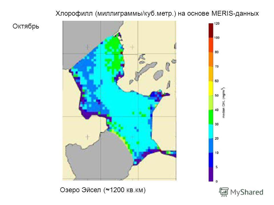 Хлорофилл (миллиграммы/куб.метр.) на основе MERIS-данных Октябрь Озеро Эйсел ( 1200 кв.км)