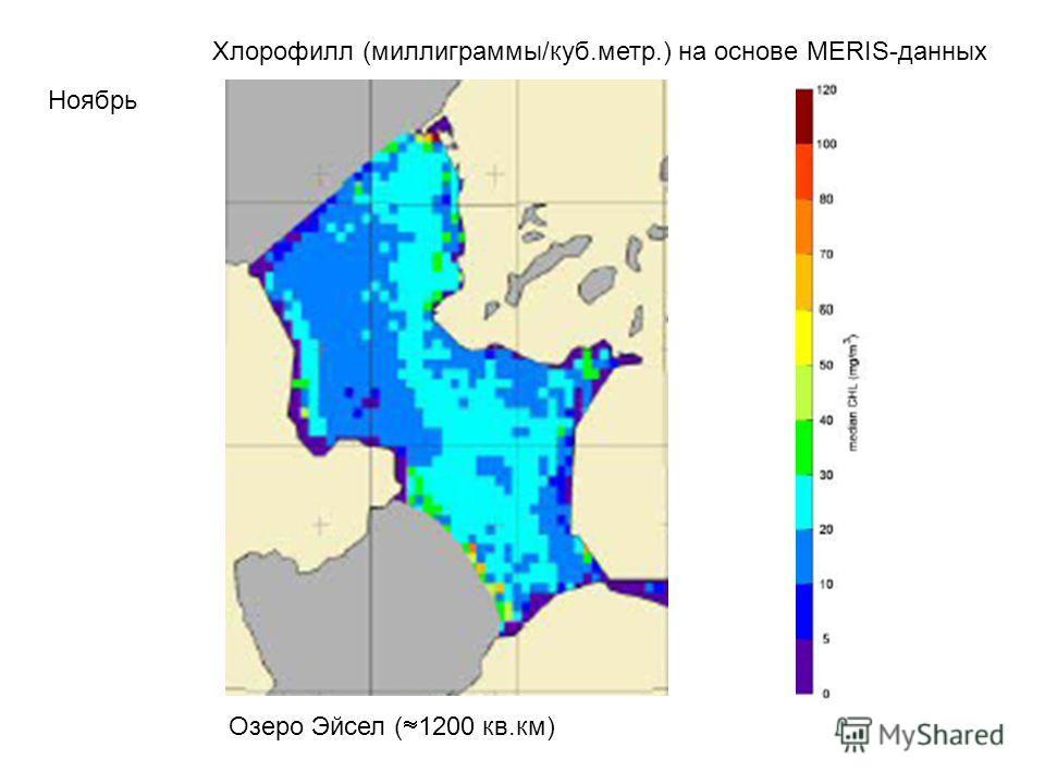Хлорофилл (миллиграммы/куб.метр.) на основе MERIS-данных Ноябрь Озеро Эйсел ( 1200 кв.км)