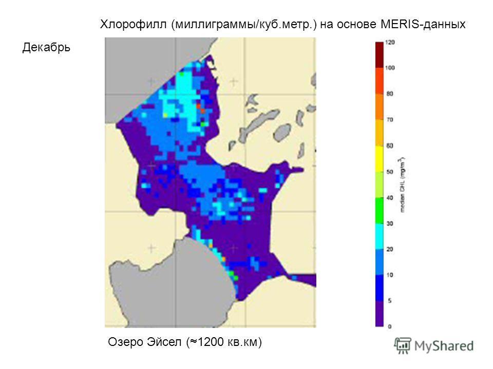 Хлорофилл (миллиграммы/куб.метр.) на основе MERIS-данных Декабрь Озеро Эйсел ( 1200 кв.км)