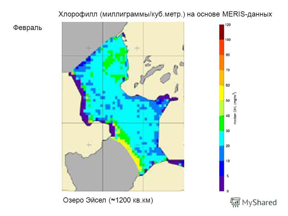 Хлорофилл (миллиграммы/куб.метр.) на основе MERIS-данных Февраль Озеро Эйсел ( 1200 кв.км)