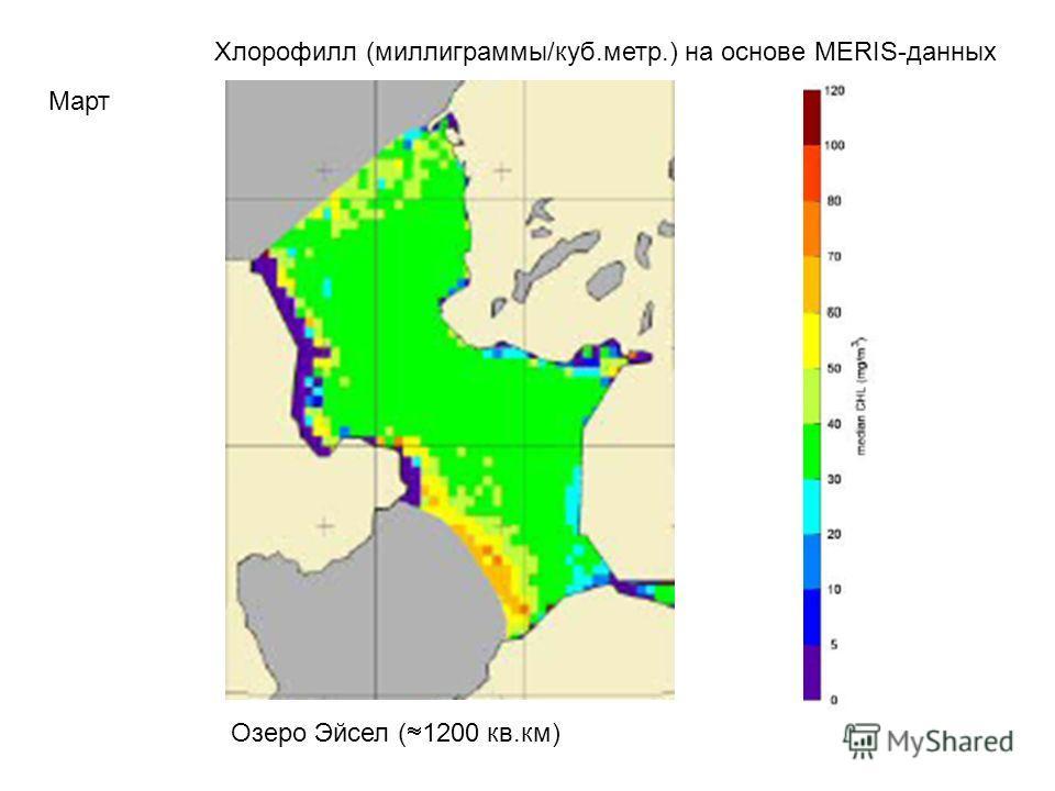 Хлорофилл (миллиграммы/куб.метр.) на основе MERIS-данных Март Озеро Эйсел ( 1200 кв.км)