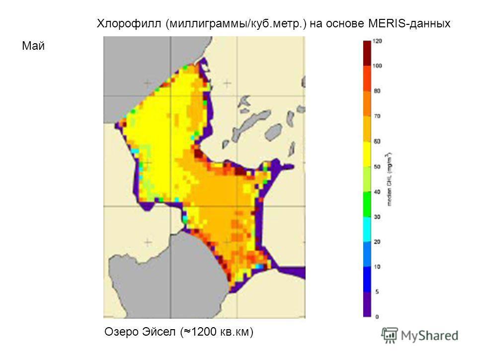 Хлорофилл (миллиграммы/куб.метр.) на основе MERIS-данных Май Озеро Эйсел ( 1200 кв.км)