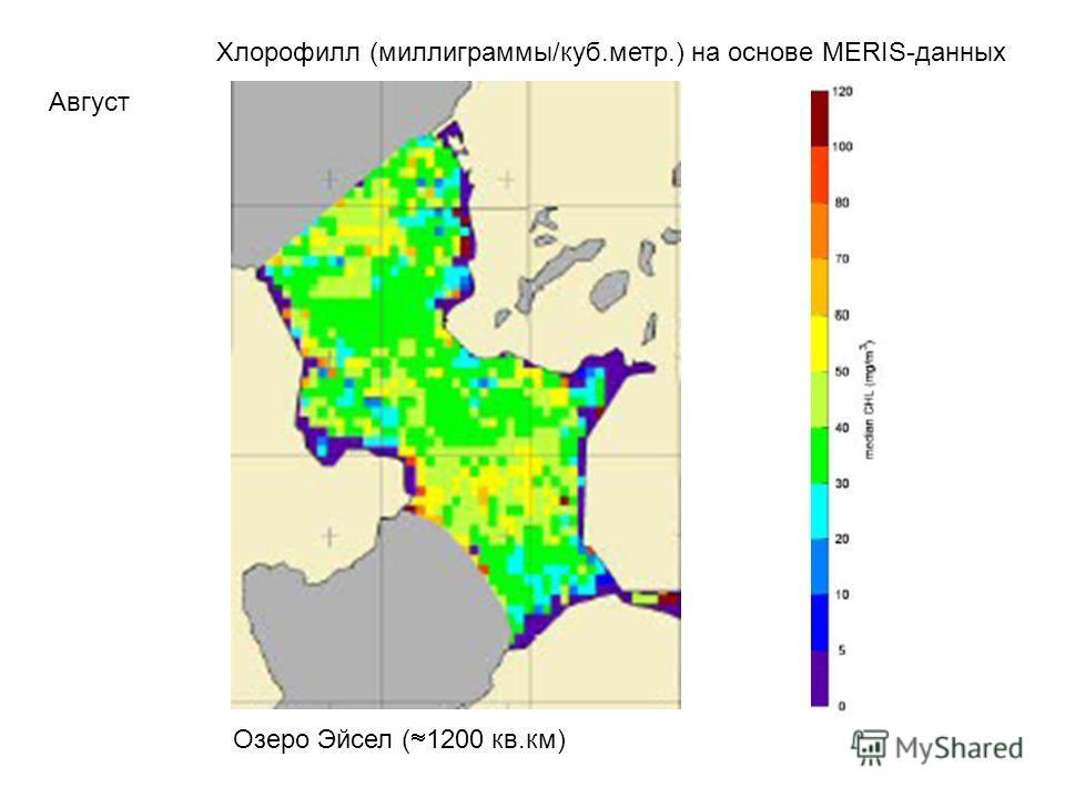 Хлорофилл (миллиграммы/куб.метр.) на основе MERIS-данных Август Озеро Эйсел ( 1200 кв.км)