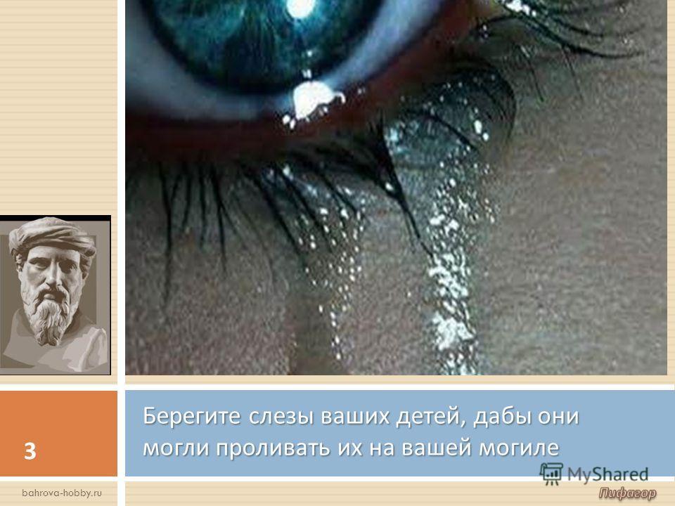 Берегите слезы ваших детей, дабы они могли проливать их на вашей могиле 3 bahrova-hobby.ru
