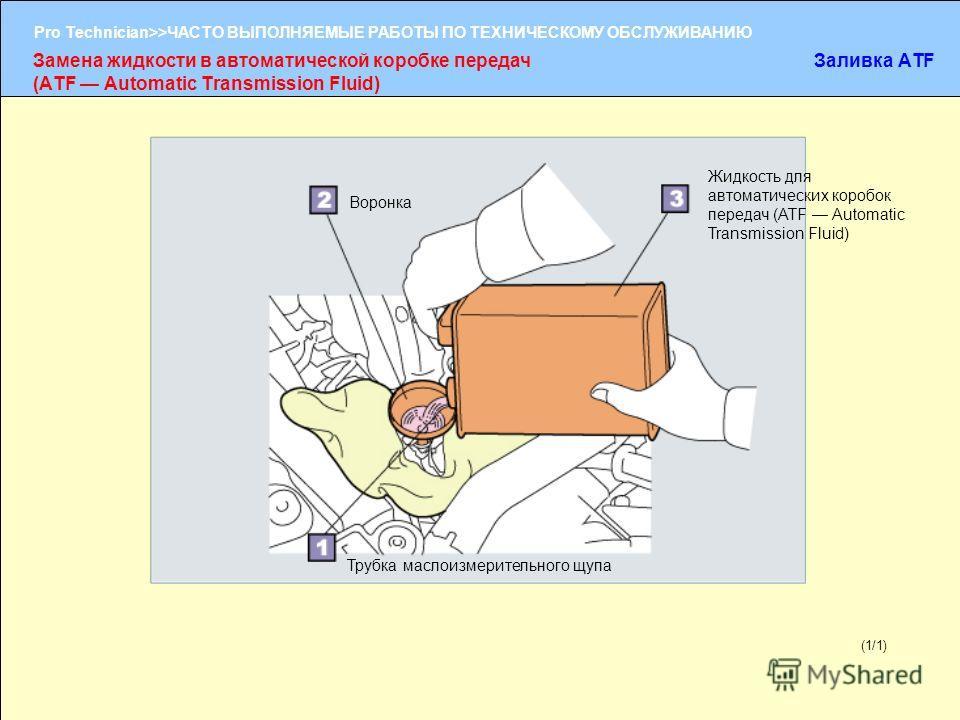 (1/2) Pro Technician>>ЧАСТО ВЫПОЛНЯЕМЫЕ РАБОТЫ ПО ТЕХНИЧЕСКОМУ ОБСЛУЖИВАНИЮ (1/1) Замена жидкости в автоматической коробке передач (ATF Automatic Transmission Fluid) Заливка ATF Трубка маслоизмерительного щупа Воронка Жидкость для автоматических коро