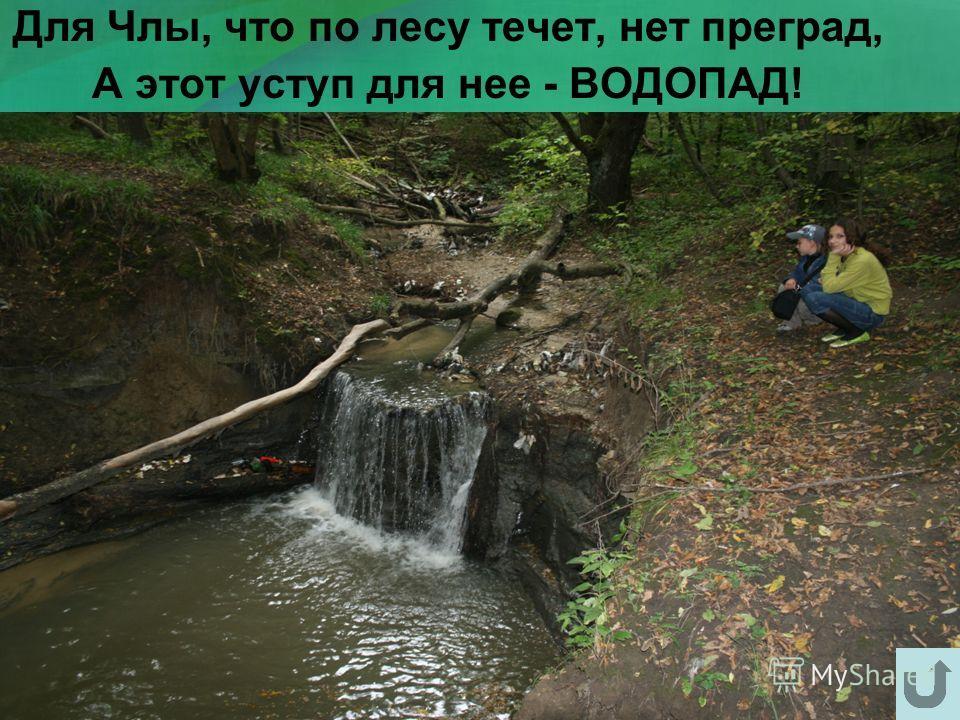 Для Члы, что по лесу течет, нет преград, А этот уступ для нее - ВОДОПАД!