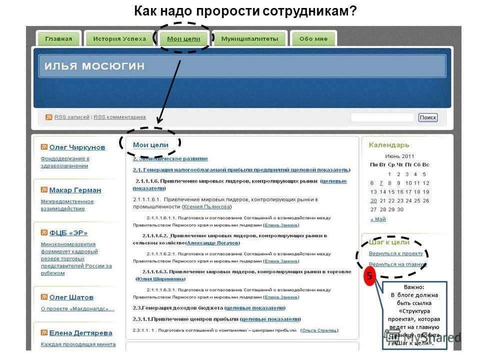 5 Как надо прорости сотрудникам? Важно: В блоге должна быть ссылка «Структура проекта», которая ведет на главную страницу проекта «Шаг к цели». 5
