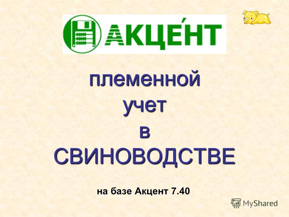племенной учет в СВИНОВОДСТВЕ на базе Акцент 7.40