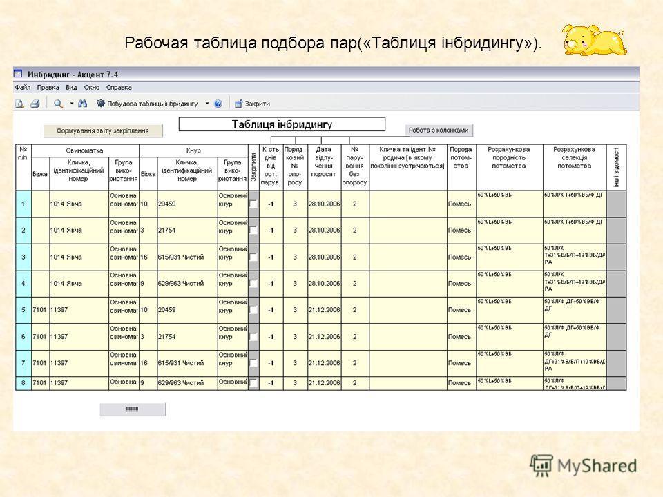 Рабочая таблица подбора пар(«Таблиця інбридингу»).