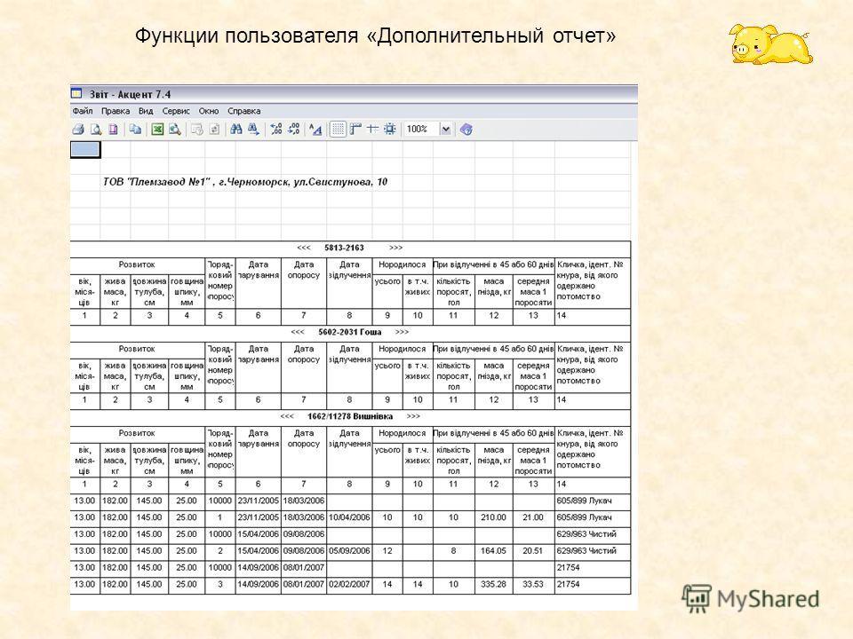 Функции пользователя «Дополнительный отчет»