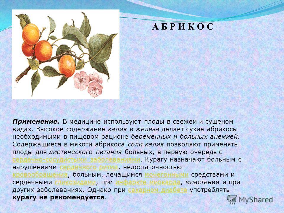 А Б Р И К О С Применение. В медицине используют плоды в свежем и сушеном видах. Высокое содержание калия и железа делает сухие абрикосы необходимыми в пищевом рационе беременных и больных анемией. Содержащиеся в мякоти абрикоса соли калия позволяют п