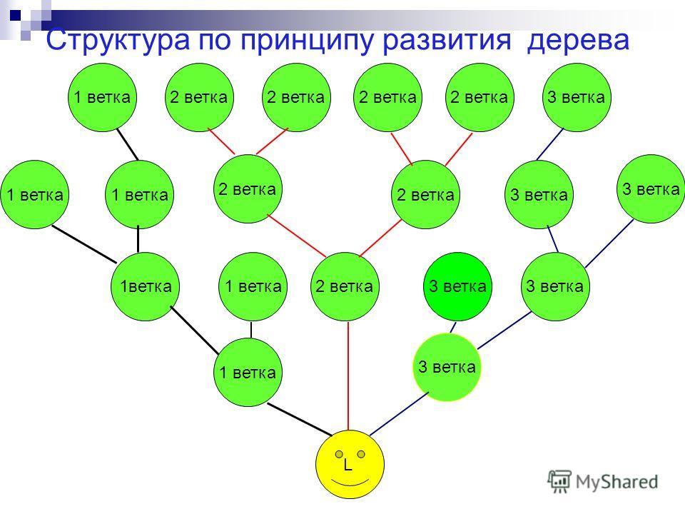 Структура по принципу развития дерева L 2 ветка 1 ветка 2 ветка1 ветка3 ветка 1 ветка 2 ветка 3 ветка 1ветка3 ветка2 ветка1 ветка3 ветка 1 ветка3 ветка