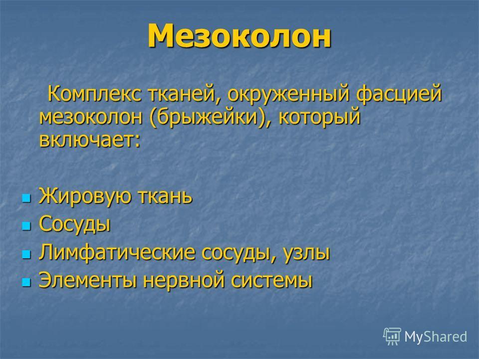 Мезоколон Комплекс тканей, окруженный фасцией мезоколон (брыжейки), который включает: Комплекс тканей, окруженный фасцией мезоколон (брыжейки), который включает: Жировую ткань Жировую ткань Сосуды Сосуды Лимфатические сосуды, узлы Лимфатические сосуд
