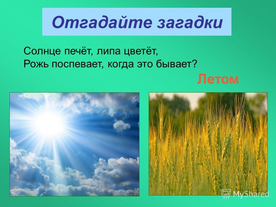 Отгадайте загадки Солнце печёт, липа цветёт, Рожь поспевает, когда это бывает? Летом