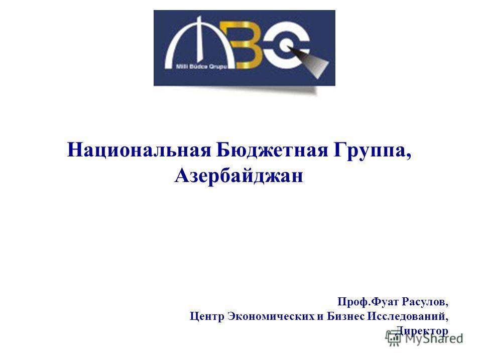 Национальная Бюджетная Группа, Азербайджан Проф.Фуат Расулов, Центр Экономических и Бизнес Исследований, Директор