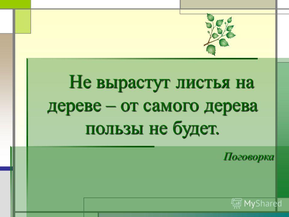 Не вырастут листья на дереве – от самого дерева пользы не будет. Не вырастут листья на дереве – от самого дерева пользы не будет. Поговорка Поговорка