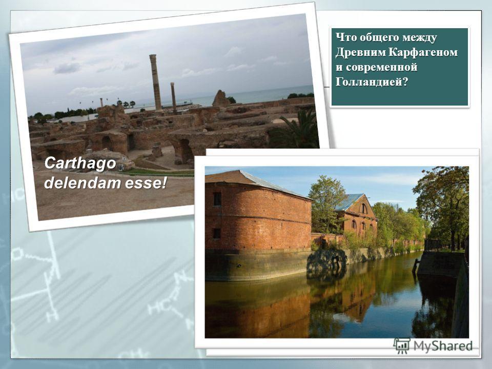 Что общего между Древним Карфагеном и современной Голландией? Carthago delendam esse!
