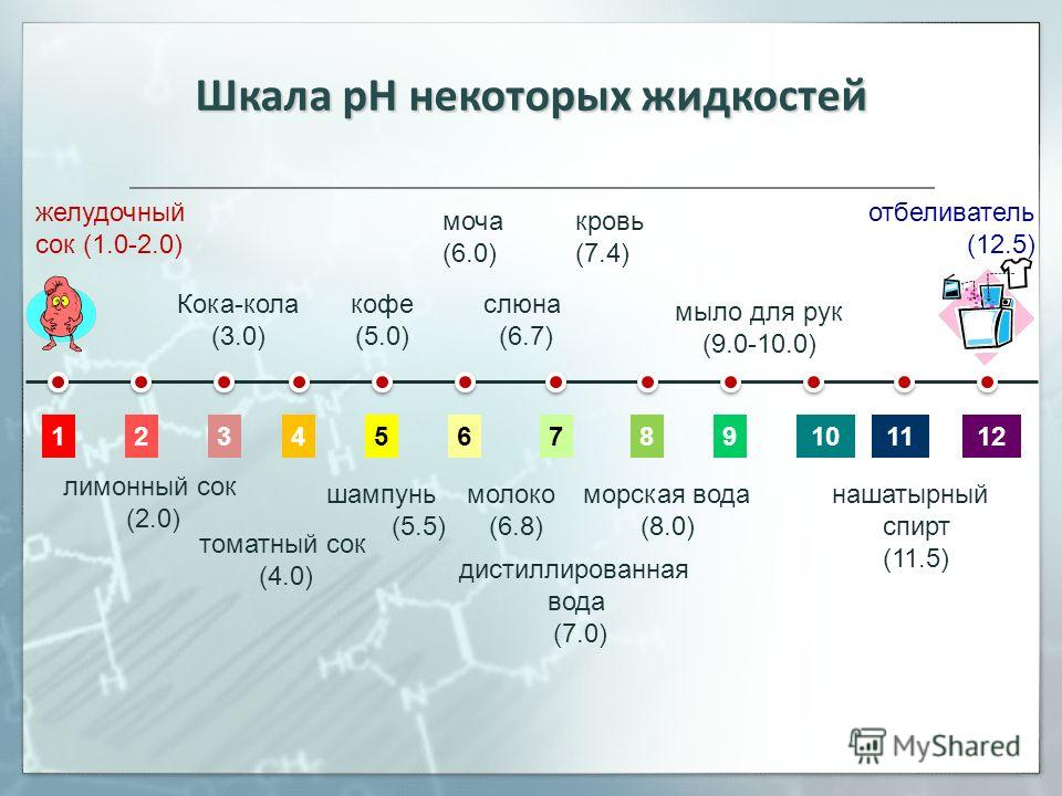 Шкала рН некоторых жидкостей 12345678910112 желудочный сок (1.0-2.0) отбеливатель (12.5) дистиллированная вода (7.0) моча (6.0) кровь (7.4) слюна (6.7) лимонный сок (2.0) Кока-кола (3.0) томатный сок (4.0) шампунь (5.5) кофе (5.0) молоко (6.8) морска