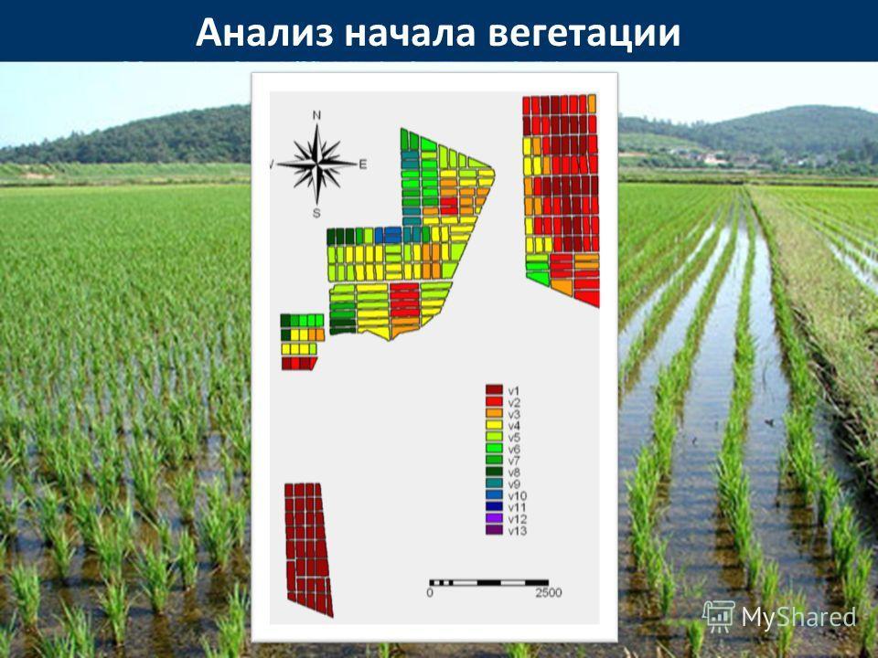 Анализ начала вегетации