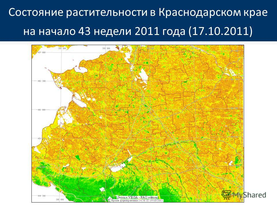 Состояние растительности в Краснодарском крае на начало 43 недели 2011 года (17.10.2011)