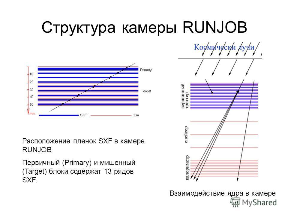 Структура камеры RUNJOB Расположение пленок SXF в камере RUNJOB Первичный (Primary) и мишенный (Target) блоки содержат 13 рядов SXF. Взаимодействие ядра в камере