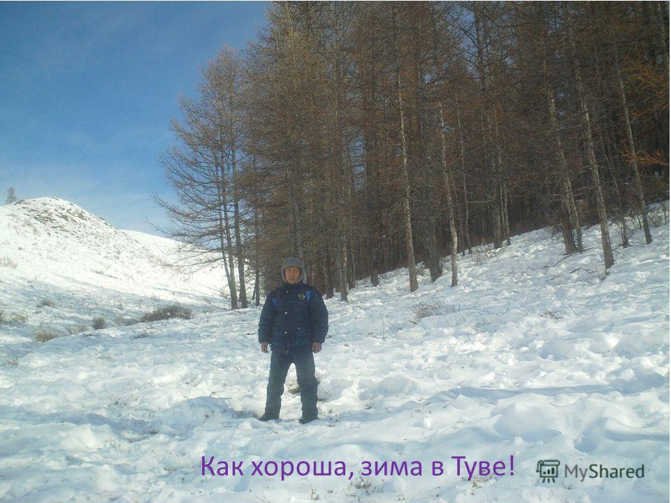 Как хороша, зима в Туве!