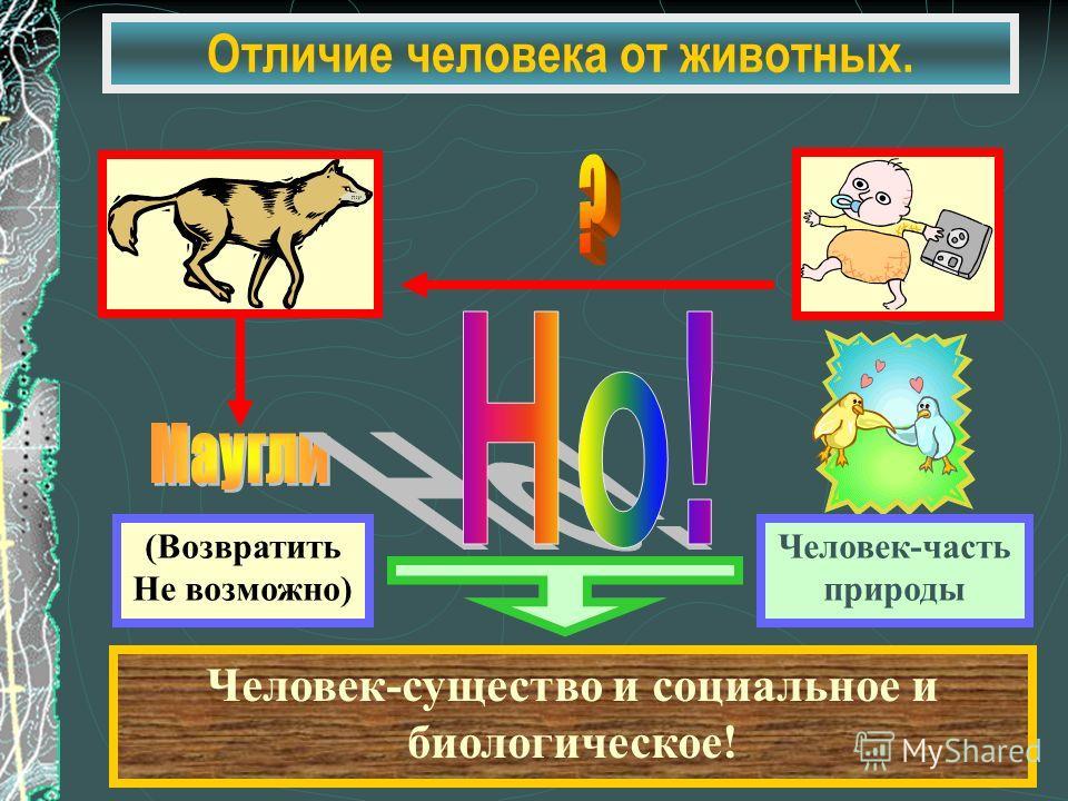 Отличие человека от животных. (Возвратить Не возможно) Человек-часть природы Человек-существо и социальное и биологическое!