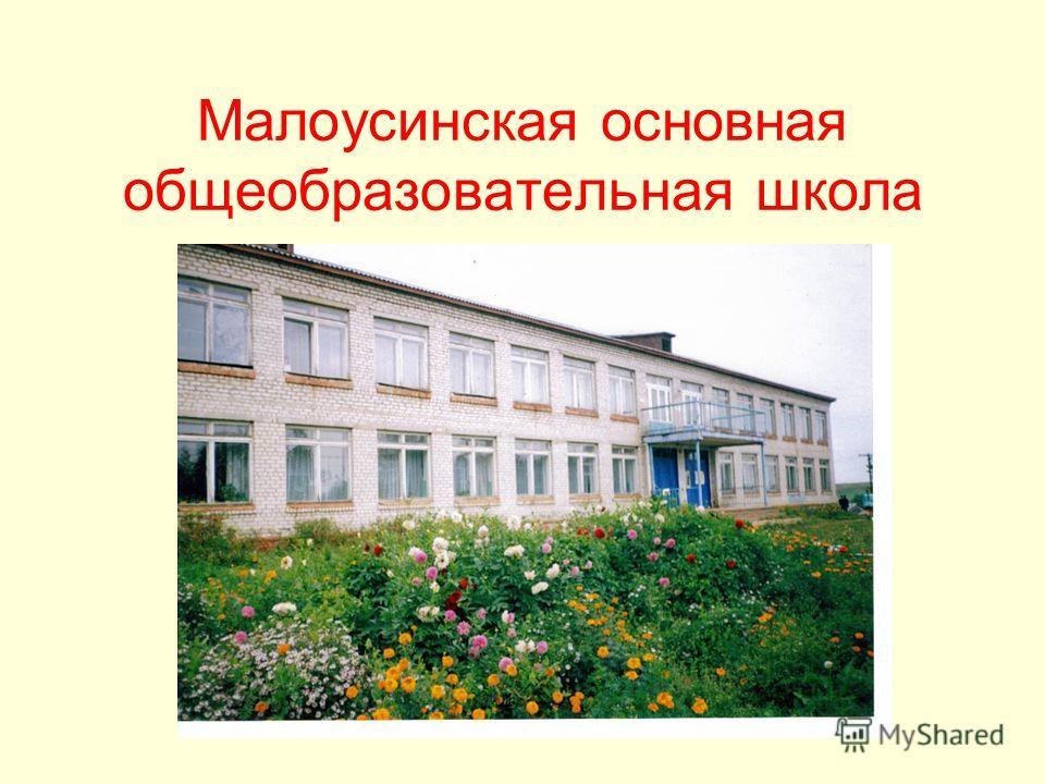 Малоусинская основная общеобразовательная школа