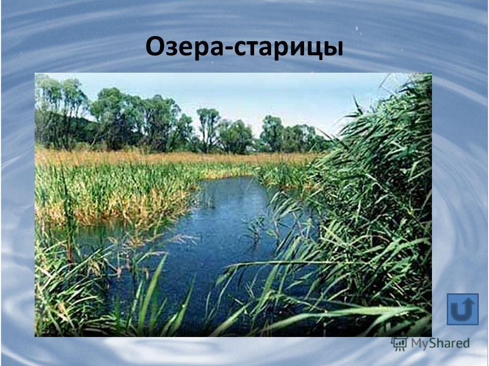 Озера-старицы