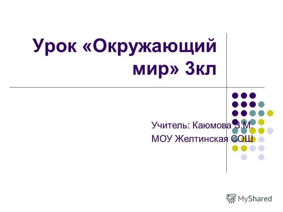 Урок «Окружающий мир» 3кл Учитель: Каюмова З.М. МОУ Желтинская СОШ