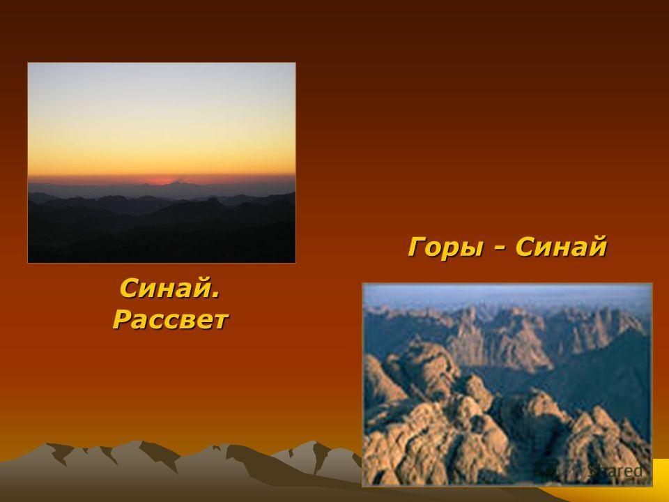 Горы - Синай Синай. Рассвет