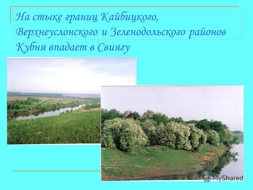 На стыке границ Кайбицкого, Верхнеуслонского и Зеленодольского районов Кубня впадает в Свиягу