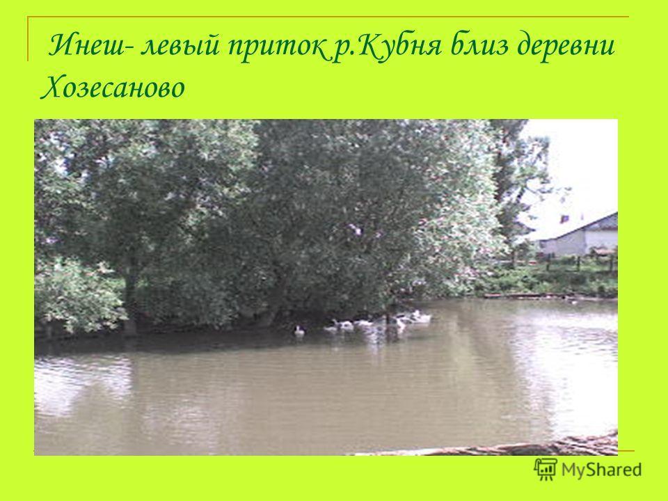 Инеш- левый приток р.Кубня близ деревни Хозесаново