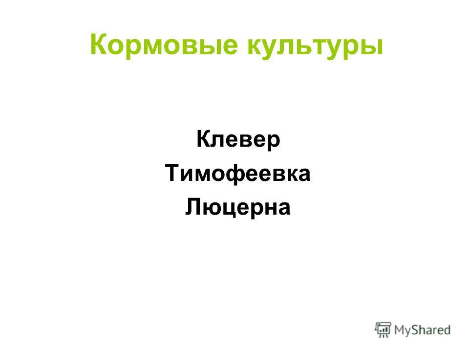 Кормовые культуры Клевер Тимофеевка Люцерна