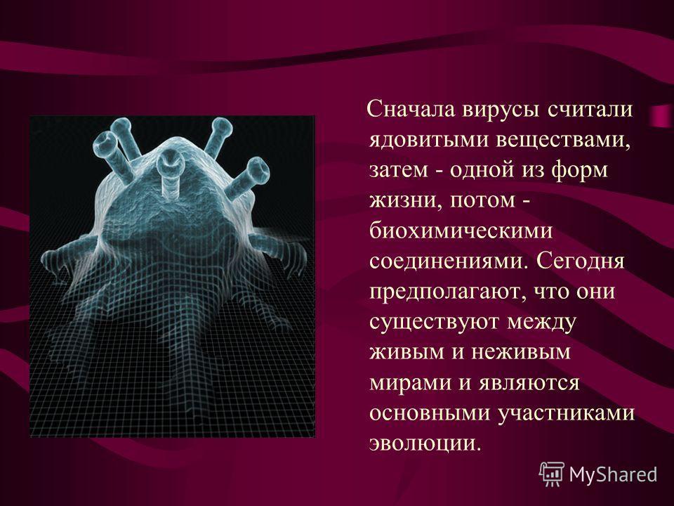 Сначала вирусы считали ядовитыми веществами, затем - одной из форм жизни, потом - биохимическими соединениями. Сегодня предполагают, что они существуют между живым и неживым мирами и являются основными участниками эволюции.