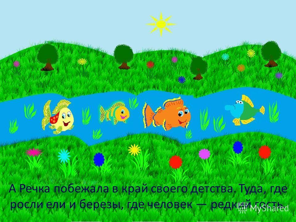 А Речка побежала в край своего детства. Туда, где росли ели и березы, где человек редкий гость.