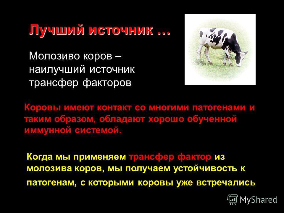 Когда мы применяем трансфер фактор из молозива коров, мы получаем устойчивость к патогенам, с которыми коровы уже встречались Молозиво коров – наилучший источник трансфер факторов Коровы имеют контакт со многими патогенами и таким образом, обладают х