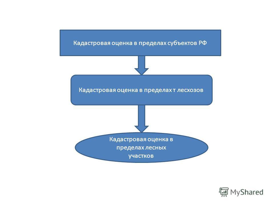 Кадастровая оценка в пределах субъектов РФ Кадастровая оценка в пределах т лесхозов Кадастровая оценка в пределах лесных участков