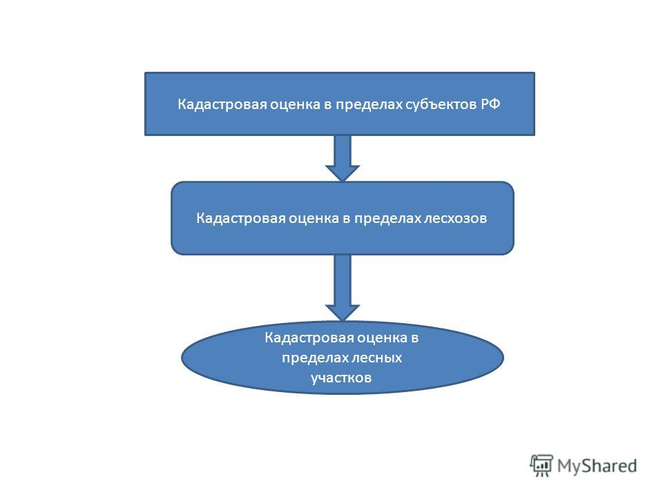 Кадастровая оценка в пределах субъектов РФ Кадастровая оценка в пределах лесхозов Кадастровая оценка в пределах лесных участков
