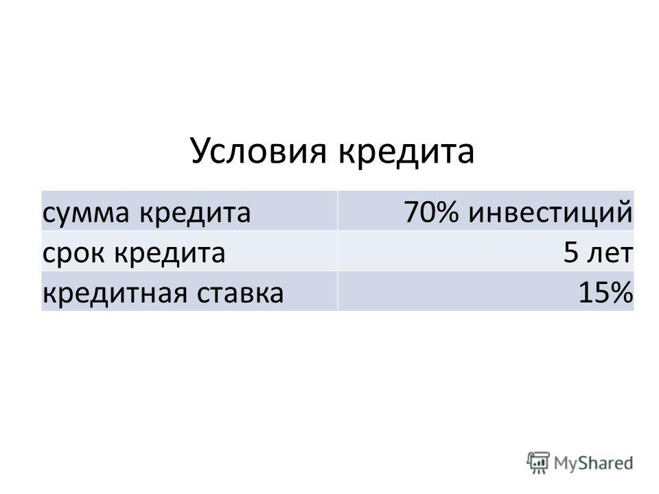 Условия кредита сумма кредита70% инвестиций срок кредита5 лет кредитная ставка15%