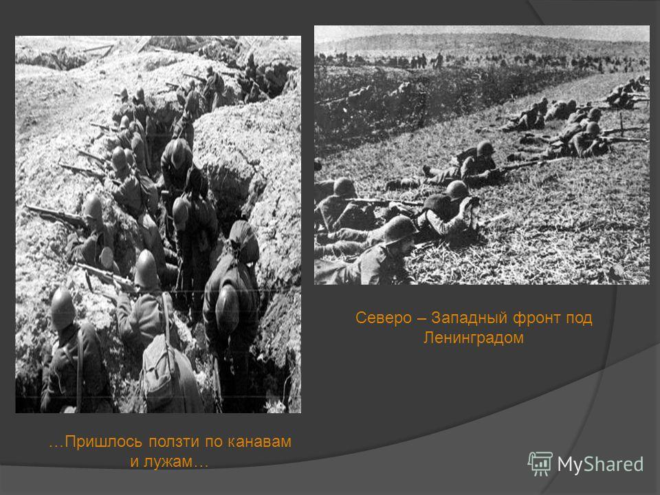 Северо – Западный фронт под Ленинградом …Пришлось ползти по канавам и лужам…