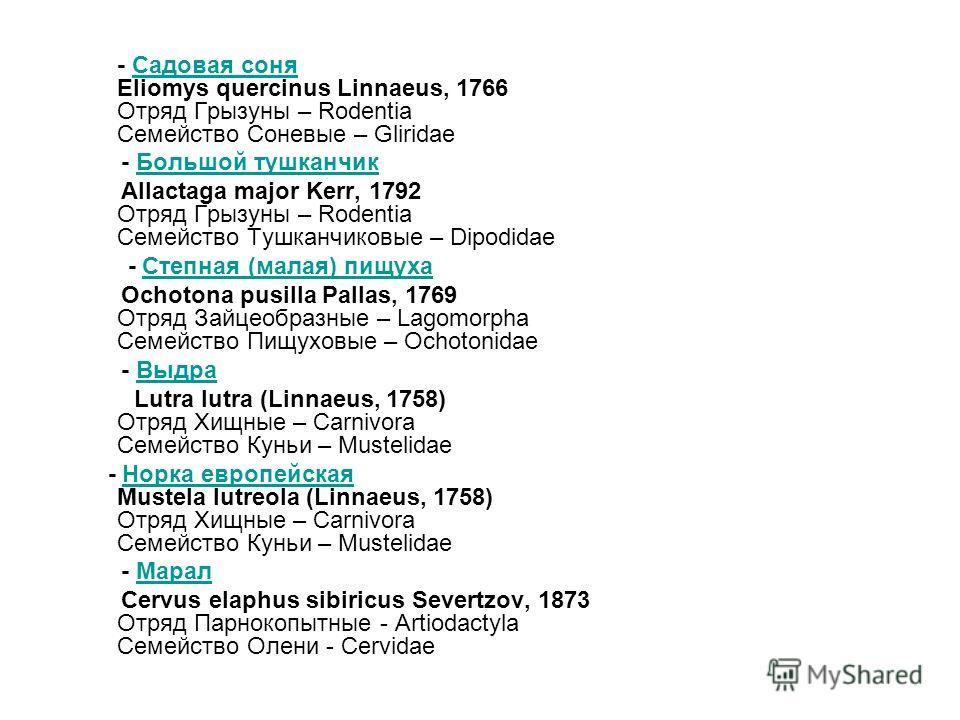 - Садовая соня Eliomys quercinus Linnaeus, 1766 Отряд Грызуны – Rodentia Семейство Соневые – GliridaeСадовая соня - Большой тушканчикБольшой тушканчик Allactaga major Kerr, 1792 Отряд Грызуны – Rodentia Семейство Тушканчиковые – Dipodidae - Степная (