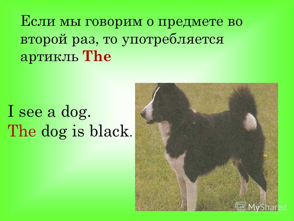 Eсли мы говорим о предмете во второй раз, то употребляется артикль The I see a dog. The dog is black.