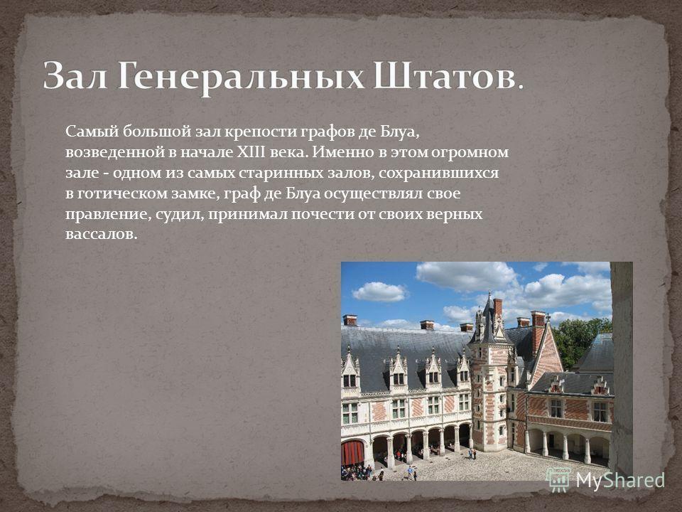 Самый большой зал крепости графов де Блуа, возведенной в начале XIII века. Именно в этом огромном зале - одном из самых старинных залов, сохранившихся в готическом замке, граф де Блуа осуществлял свое правление, судил, принимал почести от своих верны