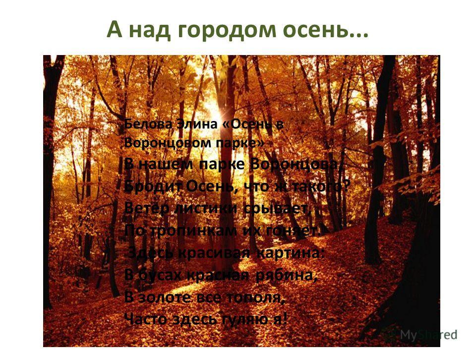 А над городом осень... Белова Элина «Осень в Воронцовом парке» В нашем парке Воронцова, Бродит Осень, что ж такого? Ветер листики срывает, По тропинкам их гоняет. Здесь красивая картина: В бусах красная рябина, В золоте все тополя, Часто здесь гуляю