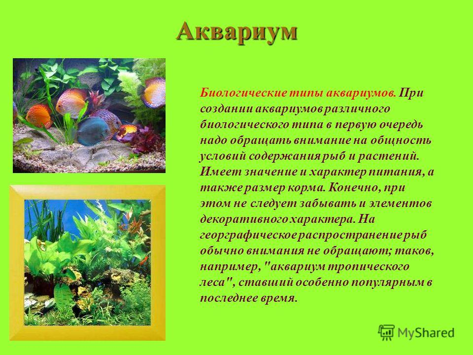 Аквариум Биологические типы аквариумов. При создании аквариумов различного биологического типа в первую очередь надо обращать внимание на общность условий содержания рыб и растений. Имеет значение и характер питания, а также размер корма. Конечно, пр